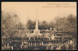 HOMMAGE AUX LEGIONNAIRES LUXEMBOURGEOIS 1914 - 1918 - Cartes Postales