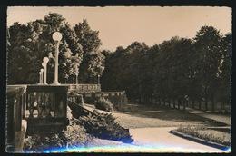 LUXEMBOURG  MONDORF LES BAINS   LE PARC  CARTE PHOTO - Mondorf-les-Bains