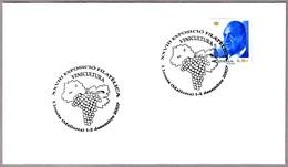 VITICULTURA - UVAS - VITICULTURE - GRAPES. Lloseta, Baleares, 2007 - Vinos Y Alcoholes
