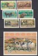 Mongolie Mi.nr.:3032-3037+block 308 Schafrassen 1999 Neuf Sans Charniére / MNH / Postfris - Mongolie