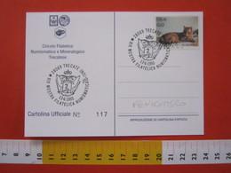 A.12 ITALIA ANNULLO 1993 TRECATE NOVARA STEMMA ARALDICA SPADA FENICOTTERO UCCELLO BIRD CARD CASTELLO - Fenicotteri