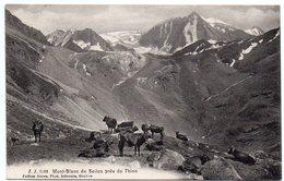SUISSE - Thion - Mont-Blanc De Seilon - VS Valais