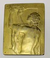 Médaille Plaquette  Bronze. P. Theunis. A Monsieur Clovis Delattre. Trésorier Bourse De Bruxelles. 1944-1945. 35x45mm - Professionnels / De Société