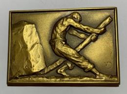 Médaille Plaquette  Bronze. Victor  Demanet. Ecole D'optique Appliquée. 25ème Anniversaire 1950. 45x65 Mm - Professionnels / De Société