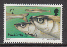 1997 Falkland Islands Fish Complete Set Of 1 MNH - Pesci