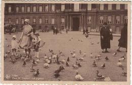 Liège - Place Saint Lambert Les Pigeons - Liege