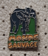 PIN'S   PIN BELGIUM AYWAILLE MONDE SAUVAGE Wild Word Safari Park ELEPHANT - Dieren