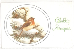 AN 631 , OLD FANTASY  GREETING  CARD ( 85 X 130 Mm) , FINE ART , BIRDS , Signed U. GENNER - Oiseaux