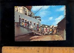 MARTINIQUE : Chargement Des Bananes Sur Bateau Navire Cargo Maritime Ship Schiff Loading Bananas - Martinique