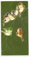 AN 646 , OLD FANTASY  FOLDING CARD ( 85 X 165 Mm ) , FINE ART , BIRDS , Signed RoSo - Oiseaux