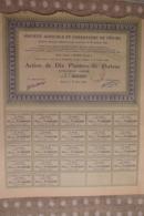 Action Société Agricole Et Forestière De Yen My  Hanoi Tonkin Dix Piastres - Actions & Titres