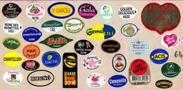Etiquettes De Fruits °_ Toutes Différentes Sur Papier Siliconé-feuillet N° 64 - Fruits Et Légumes