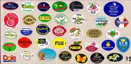 Etiquettes De Fruits °_ Toutes Différentes Sur Papier Siliconé-feuillet N° 72 - Fruits Et Légumes