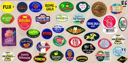 Etiquettes De Fruits °_ Toutes Différentes Sur Papier Siliconé-feuillet N° 86 - Fruits Et Légumes