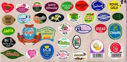 Etiquettes De Fruits °_ Toutes Différentes Sur Papier Siliconé-feuillet N° 87 - Fruits Et Légumes