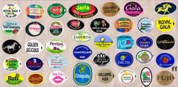 Etiquettes De Fruits °_ Toutes Différentes Sur Papier Siliconé-feuillet N° 88 - Fruits Et Légumes