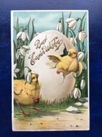 "Embossed-Gaufrée--""Oeuf De Pâques éclate""--(911)-USA Card - Easter"