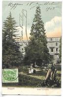 SUISSE - MEGGEN - Hôtel Gottlieben - Schweiz