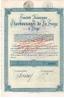 Titre Ancien - Société Anonyme Des Charbonnages De La Haye à Liège -Titre De 1930 - Mines