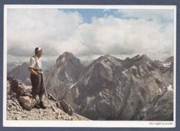 Der Gipfel Ist Erreicht - Blick Von Der Samspitze In Den Lechtaler Alpen - Lechtal