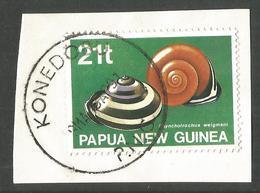 PAPUA NEW GUINEA. SNAILS / MOLUSCS. KONEDO POSTMARK. USED - Papua New Guinea