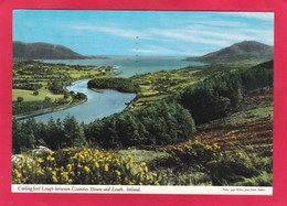 Modern Post Card Of Carlingford Lough,Co.Down,Northern Ireland,P45. - Down