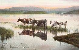 """Noonday. Lorch Ard"" Tuck Photochrome Scottish Lochs Ser. PC # 4494 - Tuck, Raphael"