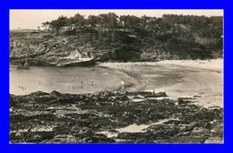 Moelan Sur Mer * La Plage Et La Pointe De Kerfany - Moëlan-sur-Mer
