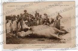 1927 - Le Missioni De La Nigrizia - AFRICA - SUDAN - Ippopotamo - Hippo - Misisoni Verona Caccia Hunting - Sudan