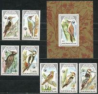 Mongolia 1987 Set 7 V + Block MNH Birds Bird Oiseaux Oiseau Woodpecker Woodpeckers Pics Pic - Specht- & Bartvögel