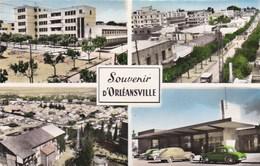 CHLEF - ORLÉANSVILLE - ALGÉRIE - CPSM MULTIVUES DENTELÉE. - Chlef (Orléansville)