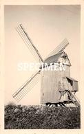 Foto Molen - Avekapelle - 6,5 X 10,5 Cm - Veurne
