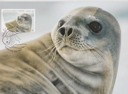 Australian Antarctic Territory 2018 Crabeater Seal,Crabeater Seal, Maximum Card - Maximum Cards