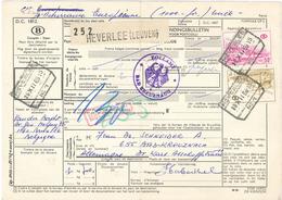 [A5] Heverlee Leuven 1969 Paketkarte Nach Bad Kreuznach Mit Zollstempel über Köln - Nachgebühr - Period 1949-1980 (Juliana)