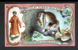 CHROMO Guerin Boutron, Les Mammiferes, Le Felis Du Tonkin - Guérin-Boutron