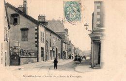S4094 Cpa 70 Luxeuil Les Bains - Avenue De La Route De Faucogney - Luxeuil Les Bains