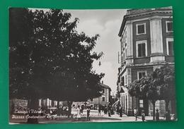 Cartolina Canino ( Viterbo ) - Piazza Costantino De Andreis - 1953 - Viterbo