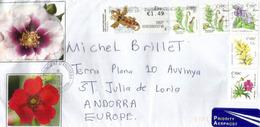 Belle Lettre D'Irlande (Éire) 2020, Fleurs & Salamandre, Adressée Andorra, Avec Timbre à Date Arrivée - 1949-... Repubblica D'Irlanda
