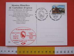 A.13 ITALIA ANNULLO 1994 MEZZANA MORTIGLIENGO VERCELLI BIELLA AQUILA STEMMA CARD CASAPINTA STRONA CROSA SOPRANA - Francobolli