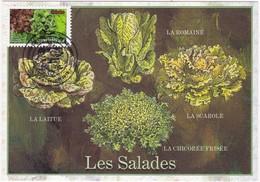 CM: FRANCE: FLORE-LEGUMES : SALADES : 1er Jour 13 Juin 2012 - 2010-...