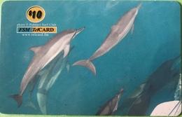"""MICRONESIE  -  Prepaid  -  """" Squale """"  -  $10 - Micronésie"""