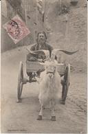 Attelage De Bouc Ou Chèvre. Probablement à Dinan. Homme Assis Sur Sa Charrette Tirée Par Un Bouc Ou Une Chèvre. - Folclore
