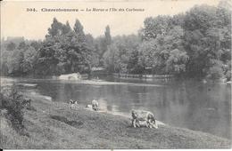 1912 - Charentonneau - La Marne à L'Ile Des Corbeaux - Maisons Alfort
