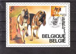 3066 Chien/Dog De Race Belge - Chien De Saint-Hubert - Chiens