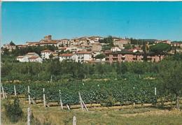 PERUGIA - TUORO SUL TRASIMENO - PANORAMA.........C7 - Perugia