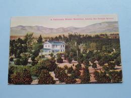 A California Winter Residence Among The ORANGE Groves ( Newman ) Anno 19?? ( See Photos ) ! - Etats-Unis