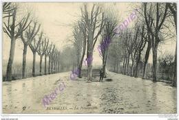 13. PEYROLLES . La Promenade . - Francia