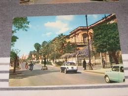 CATANIA  VIALE REGINA MARGHERITA  COLORI VG 1964 - Catania