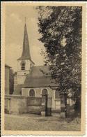 MUIZEN - St. Lambertus Kerk 1948 - Malines