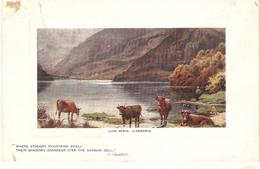 """""""E. Longstffe. Lly Peris.Llandudno""""  Tuck Oilette Plate Marked Picturesque Wales PC # 9718 - Tuck, Raphael"""